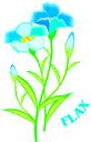 flax seed oil and eczema